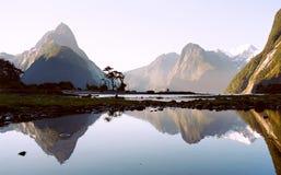 Milford Sound con la reflexión Imagen de archivo libre de regalías