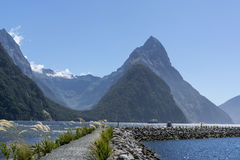Milford sound dock Royalty Free Stock Photography