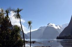 Milford Sound durante la bajamar Fotografía de archivo libre de regalías