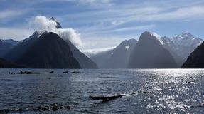 Milford Sound durante la bajamar Foto de archivo