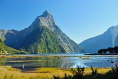 Milford Sound em Nova Zelândia Foto de Stock Royalty Free