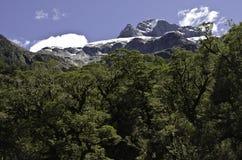 Milford Sound. Fiordland. Beautiful New Zealand. Stock Photography