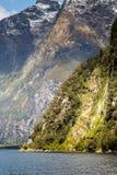 Milford Sound, Fiordland, New Zealand. Royalty Free Stock Images