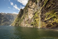 Milford Sound, Fiordland, New Zealand. Stock Photography