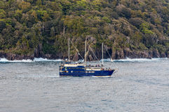 Milford Sound Fjord , South Island, New Zealand Royalty Free Stock Photography