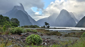 Milford Sound (Fjordland, New Zealand) Stock Photos