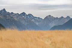 Milford Sound highway, New Zealand Royalty Free Stock Photos