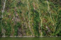 Milford Sound kortkortvattenfall Royaltyfri Bild