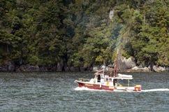 Milford Sound - la Nuova Zelanda Immagine Stock Libera da Diritti