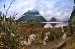 Milford Sound lake Stock Images