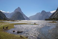 Milford Sound and Mitre Peak Royalty Free Stock Images