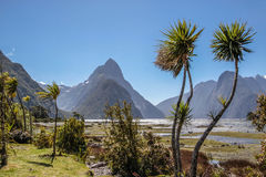 Milford Sound and Mitre Peak Royalty Free Stock Photography