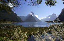 Milford Sound - Neuseeland Stockfotos