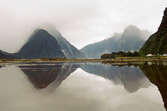 Milford Sound, New Zealand Stock Images
