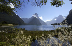 Milford Sound - New Zealand. Mitre Peak (1692m) and Milford Sound on the south island of New Zealand. Milford Sound is a fjord in the Fiordland National Park and Stock Photos