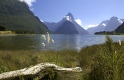Milford Sound - New Zealand Stock Photography