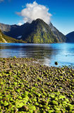 Milford Sound, New Zealand Royalty Free Stock Photo
