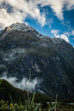 Milford Sound, New Zealand. Milford Sound, south island in New Zeland. Beautiful landscape royalty free stock photos