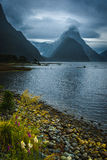 Milford Sound, New Zealand. Milford Sound, south island in New Zeland. Beautiful landscape Stock Photo