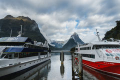 Milford Sound, New Zealand. Milford Sound, south island in New Zeland. Beautiful landscape Royalty Free Stock Images