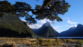 Milford Sound Nueva Zelandia Fotos de archivo