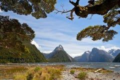 Milford Sound, NZ стоковые фото