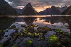Milford Sound, New Zealand. Milford Sound Piopiotahi is a famous attraction in the Fiordland National Park, south island of New Zealand royalty free stock photo