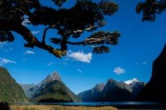 Milford Sound/Piopiotahi, Nueva Zelanda/Aotearoa Imágenes de archivo libres de regalías