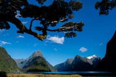 Milford Sound/Piopiotahi, Nuova Zelanda/Aotearoa Immagini Stock Libere da Diritti