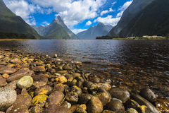 Milford Sound unter bewölktem Himmel Lizenzfreies Stockfoto