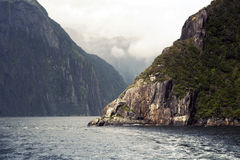 Milford Soundi, a fiord in the south west of New Zealand's South Island, within Fiordland National Park. Milford Sound or Piopiotahi, a fiord in the south west Royalty Free Stock Image