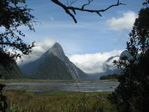 Milford Sounds, New Zealand Stock Image