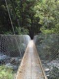 Milford szlakowy huśtawkowy most Obraz Stock