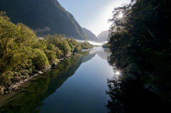 Milford Track Stock Image