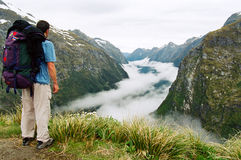 Milford track fog valley, New Zealand Royalty Free Stock Photos