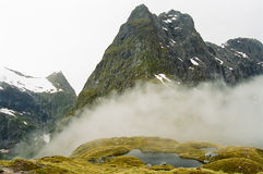 Milford track, New Zealand Royalty Free Stock Photo