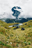 Milford track, New Zealand royalty free stock photography