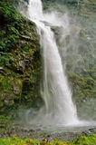 Milford track, New Zealand stock images