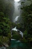 Milford Track waterfall Stock Image