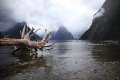 Milfordgeluid, fiordland nationaal park, Nieuw Zeeland royalty-vrije stock fotografie