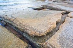 75 milhão anos de Shell fóssil velho Fotos de Stock Royalty Free