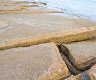 75 milhão anos de Shell fóssil velho Foto de Stock
