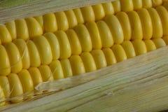 Milho imagens de stock