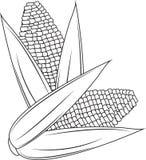 Milho ilustração royalty free