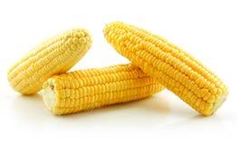 Milho amarelo maduro isolado no branco Fotos de Stock Royalty Free
