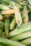 Milho amarelo no mercado Imagens de Stock Royalty Free