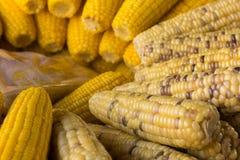 Milho bolied close up na bandeja no mercado Imagens de Stock