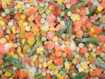 Milho, cenouras, feijões e pimentas congelados Imagens de Stock