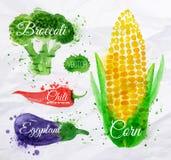 Milho da aquarela dos vegetais, brócolis, pimentão, ilustração do vetor