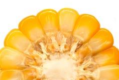 Milho da fatia Fotografia de Stock Royalty Free